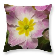 A Shy Flower  Throw Pillow