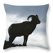 A Silhouetted Bighorn Sheep Standing Throw Pillow