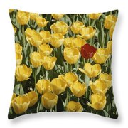 A Single Red Tulip Among Yellow Tulips Throw Pillow
