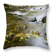 A Small Dam Of Golden Leaves  Throw Pillow