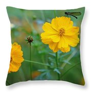 A Small Dragon Fly Sitting On A Yellow Flower Throw Pillow