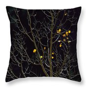 A Small Number Of Leaves Still Cling Throw Pillow