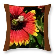 A Snail's Pace Throw Pillow