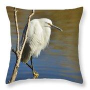 A Snowy Egret  Throw Pillow