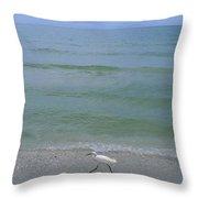 A Snowy Egret Walks Along The Beach Throw Pillow