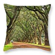 A Southern Lane Throw Pillow