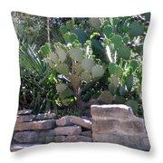 A Southwestern Patio Throw Pillow