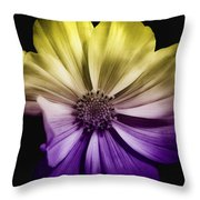 A Special Daisy II Throw Pillow