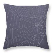 A Spider's Handiwork Throw Pillow
