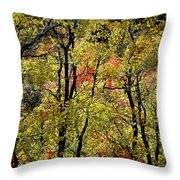A Splash Of Fall Throw Pillow