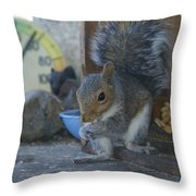 A Squirrel In 55 Degree Weather Throw Pillow