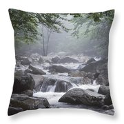 A Stream Courses Through An Throw Pillow