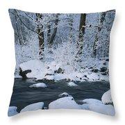 A Stream Running Through Snowy Woodland Throw Pillow