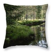 A Stream Wanders Through A Lush Taiga Throw Pillow