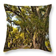 A Stroll Through Time Throw Pillow