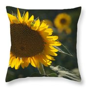A Sunflower Bows To Its Own Weight Throw Pillow