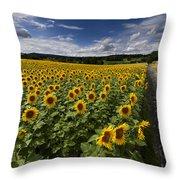 A Sunny Sunflower Day Throw Pillow