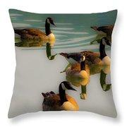 A Swim At Sunset Throw Pillow