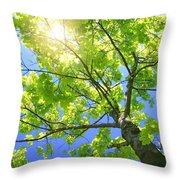A Tall Tree Throw Pillow