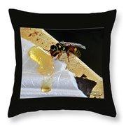 A Taste Of Honey Throw Pillow