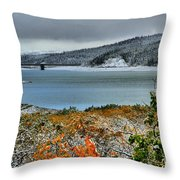 A Taste Of Winter Throw Pillow