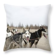 A Team Of Dogs Pull A Cart Throw Pillow
