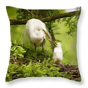 A Tender Moment - Great Egret And Chick Throw Pillow
