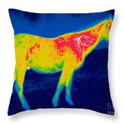 A Thermogram Of A Horse Throw Pillow