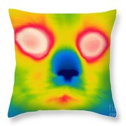 A Thermogram Of A Long Haired Cat Throw Pillow