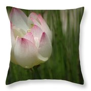 A Touch Of Blush Throw Pillow