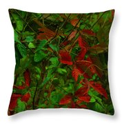 A Touch Of Christmas In Nature Throw Pillow