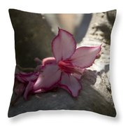 A Touch Of Pink V2 Throw Pillow
