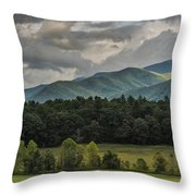 A Touch Of Sunshine Throw Pillow