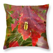 A Touch Of Yellow In Fall Throw Pillow