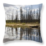 A Tranquil River With A Reflection Throw Pillow by Susan Dykstra