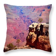 A Tree And The Canyon Throw Pillow