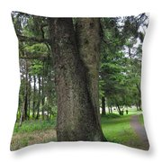 A Tree Divided Throw Pillow