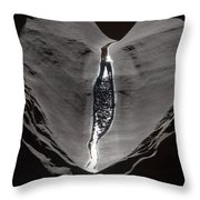 A Trickle Of Water Glistening Throw Pillow