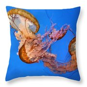 A Trio Of Jellyfish Throw Pillow