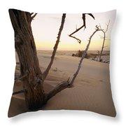 A Twilight View Of Drift Wood Throw Pillow