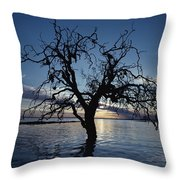 A View At Dawn Of A Silhouetted Tree Throw Pillow
