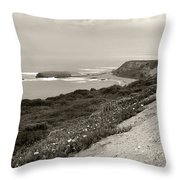 A View Central California Coast Throw Pillow