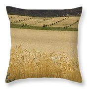 A View Of A Summer Field Of Wheat Throw Pillow