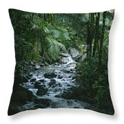 A View Of A Tropical Stream In El Throw Pillow