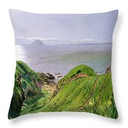 A View Of Ailsa Craig And The Isle Of Arran Throw Pillow