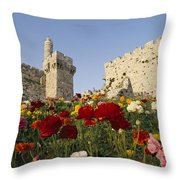 A View Of Flowers Growing Throw Pillow