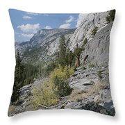 A View Through Goddard Canyon Throw Pillow