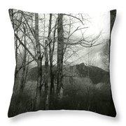 A View Through The Trees Bw Throw Pillow