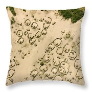 A Village On The Shores Of Lake Chad Throw Pillow
