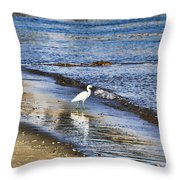 A Visit To The Beach Throw Pillow